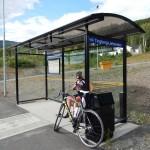 Radlwolf wartet nicht auf den Bus