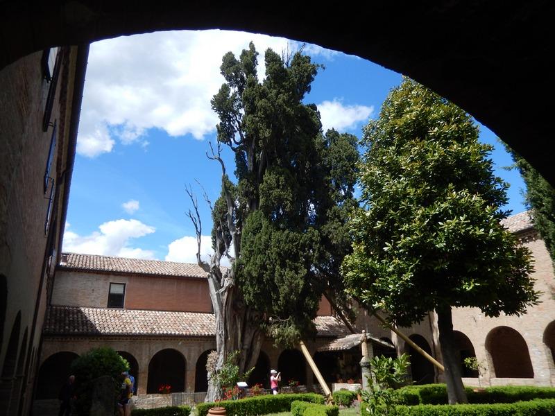 Die Cipressa di Francesco wurde 1213 von Franz von Assisi in der Nähe von Verucchio gepflanzt