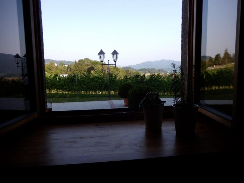 Aussicht vom Weingut Taggenbrunn