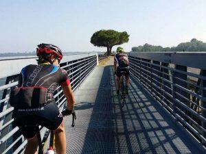 Die letzten Kilometer vor dem Ziel in Grado